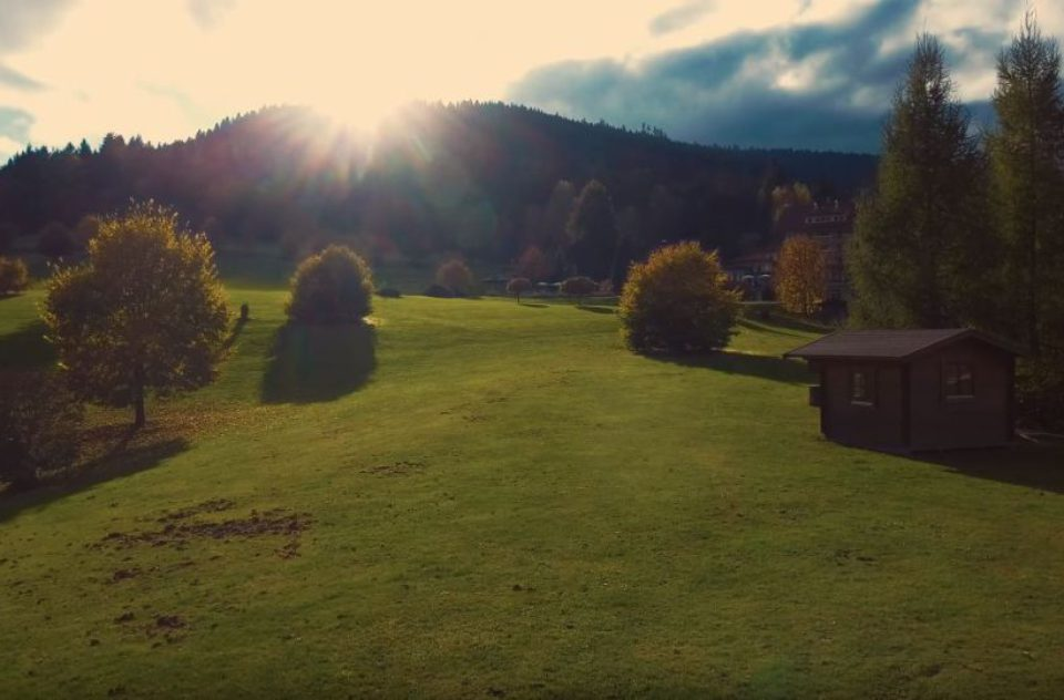 The Beauty of Germany's Black Forest