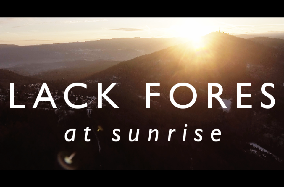 Aerial video of Black Forest at sunrise
